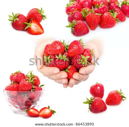 collection of strawberry on white background