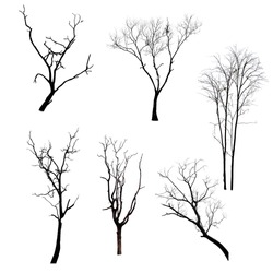 Collection of trees silhouettes