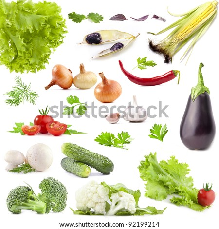 Collection of vegetables with a light shadows isolated on white