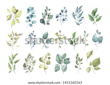 Collection of watercolor tropical greenery floral leaf plant forest herbs leaves spring flora isolated on white background. Botanical decorative illustration for wedding invitation card