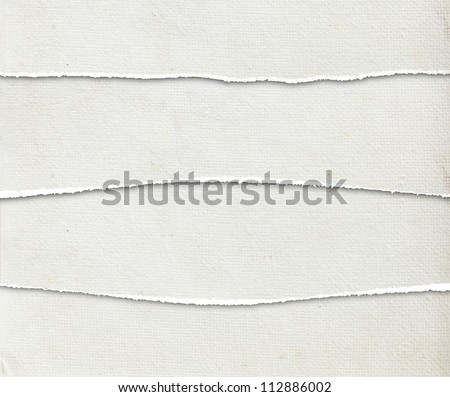 Collection of white torn paper textures background