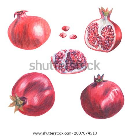 Collection of whole, half, broken pomegranate. Grains of garnet fruit. Colored pencil technique. Vinous elements cut out on white background. Hand drawn.  Foto d'archivio ©