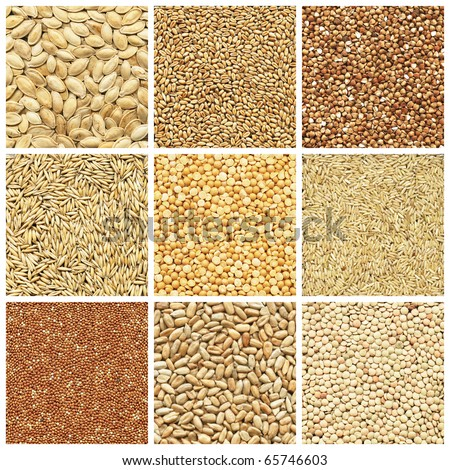 Collection products, wheat, barley, millet, oat, pea, peanuts, pumpkin seed