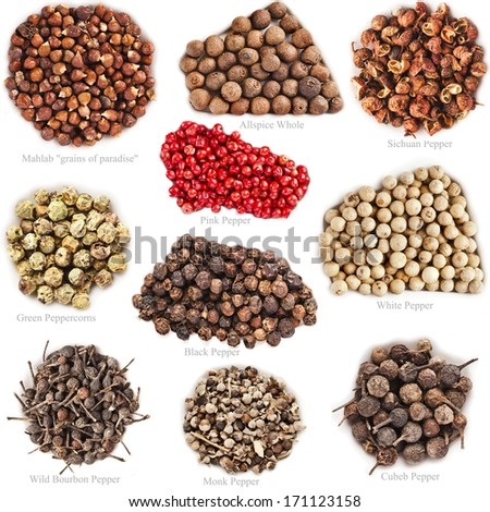Spices of a collage are isolated on a white background with