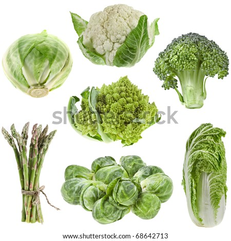 collection set of fresh green cabbage isolated on white background
