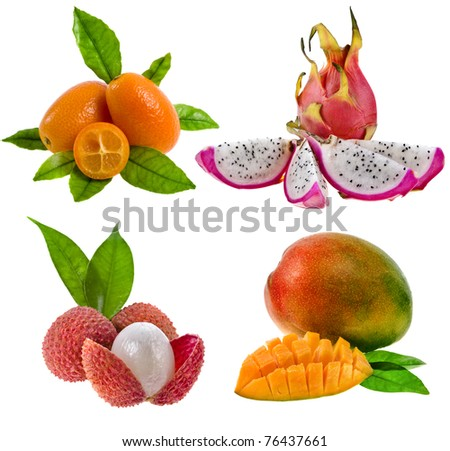 Collection set of Kumquat , pitahaya dragon, litchi , mango - fresh exotic tropical fruits  isolation on white background