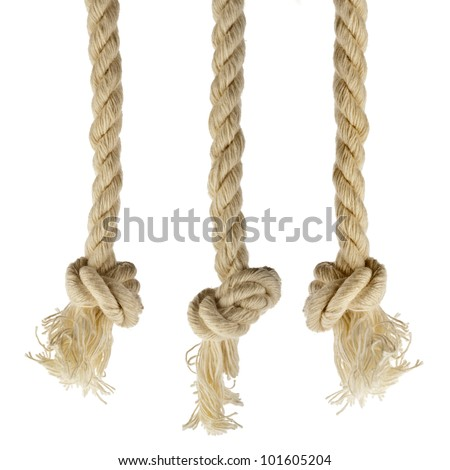Collection set of ropes with knot isolated on white background