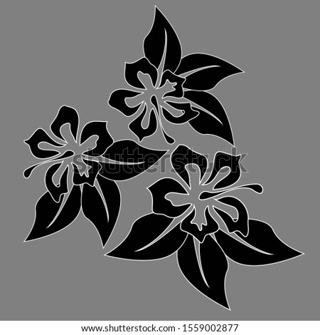 Collection with hibiscus flower. Hibiscus flower. Spring decoration. Exotic botanical background. Exotic summer print. Beautiful black pattern on white backdrop.