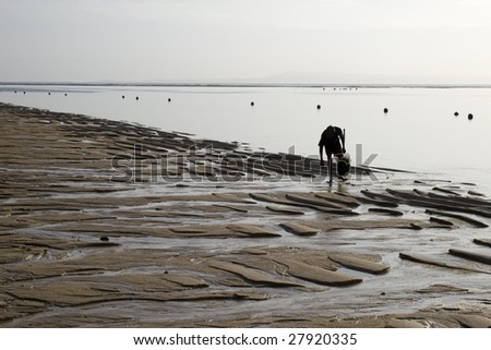 Collector of seaweed,  Indian ocean beach, outflow, morning, Indonesia Bali