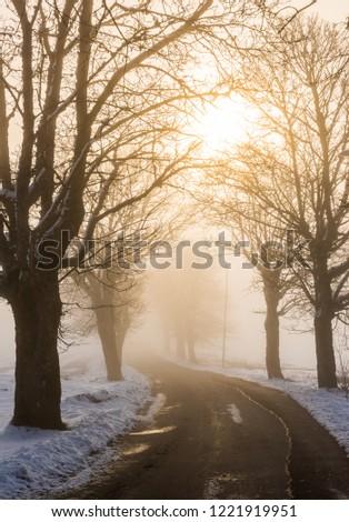 Collonade in winter, Sweden