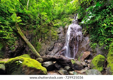 Colombia, wild Darien jungle of the Caribbean sea near Capurgana resort and Panama border. Central America. Waterfall into the jungle
