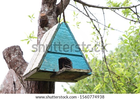 color bird house, picture taken in Guarilihue fields