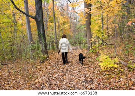 Color DSLR stock picture of mature, fit, adult woman exercising walking her pure bred black labrador retriever in the fall woods.  Autumn leaves turning to brown.  Horizontal with copy space for text.