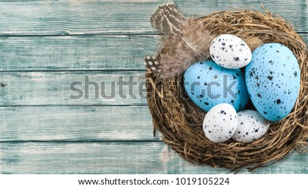 Color easter eggs #1019105224