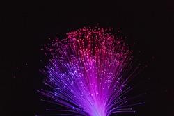 color fiber optical background on black, Fiber optics lights abstract background