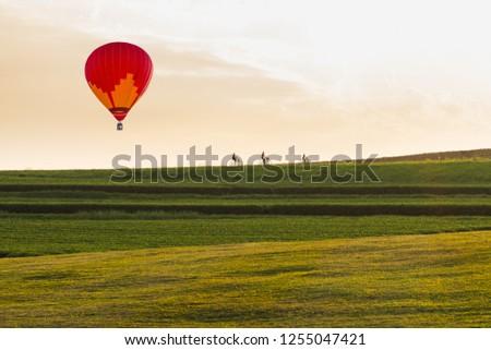 color hot air balloon at tea plantation farm with sky background