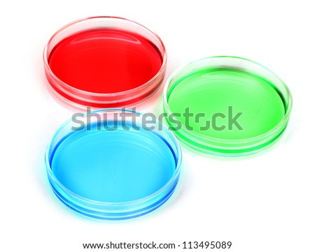 color liquid in petri dishes isolated on white