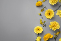 Color of the year 2021. Beautiful yellow flowers and space for text on grey background, flat lay
