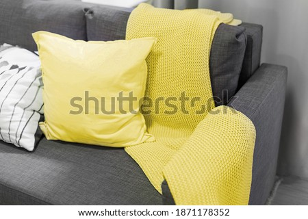 Color of the year 2021. blanket and pillows on the sofa in the interior