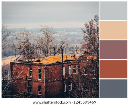Color palette. Color theory and mixing.  #1243593469