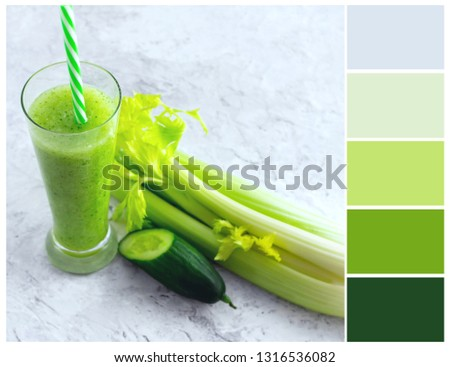 Color palette. Green and gray colours. #1316536082