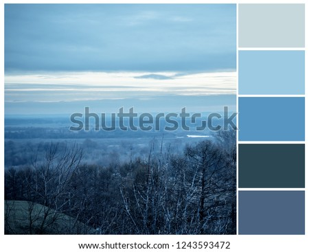 Color palette with complimentary colour swatches. Blue colours. #1243593472