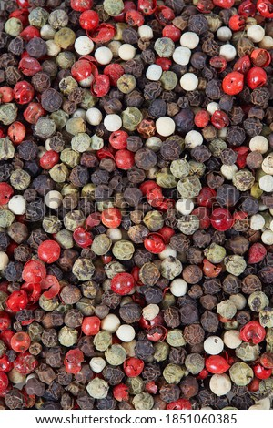 color peppercorns isolated on white background Stock photo ©
