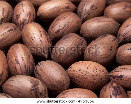 stock photo : Color photo of several pecans in the shell.