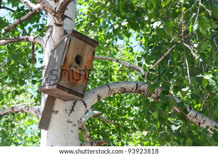 Color photograph of a birdhouse on a tree