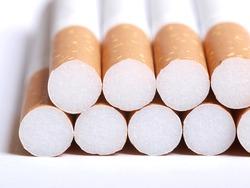 Color photograph of filtered cigarettes closeup