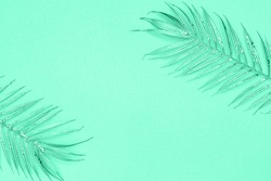 COLOR TREND 2020 Aqua Menthe. Abstract monochrome background in trendy Aqua Menthe cyan mint color toned. Palm glitter silver twigs decorations, copy space, text place
