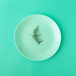 COLOR TREND 2020 Aqua Menthe. Food background with a plate and a leaf of greens in a trendy Aqua Menthe mint blue tinted color.