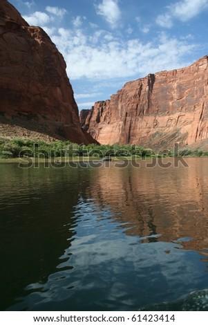 Colorado River in Glen Canyon : Shutterstock