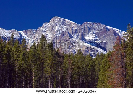 Colorado's Rocky Mountains with snow among Pine trees