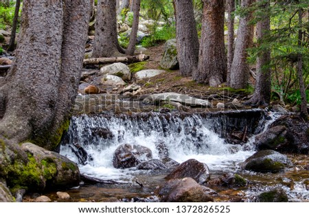 colorado waterfall in a beautiful wooded area near Mount Evans