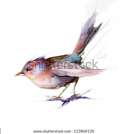 Colored bird in withe background
