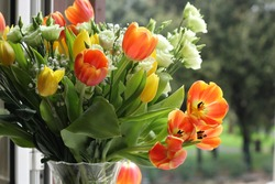 colored bouquet of tulips, consisting of orange, white, yellow flowers standing by the window on a blurred green background of nature