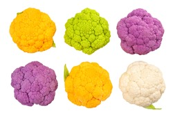 colored cauliflower path isolated on white top view