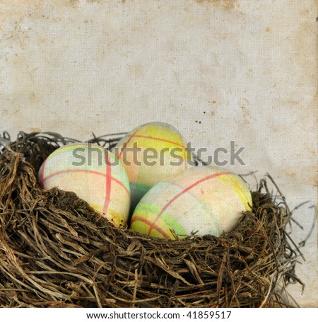 Colored Easter eggs in a nest on a grunge background.