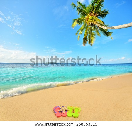 Colored flip flops and starfish at tropical golden sand beach -- Tropical beach vacation and travel concept