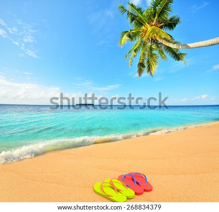 Colored flip flops at tropical golden sand beach -- Tropical beach vacation and travel concept