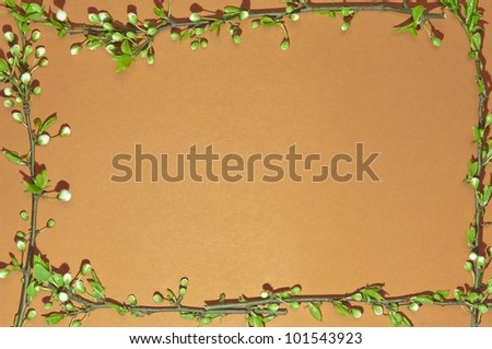 Colored frame with green and white flowery