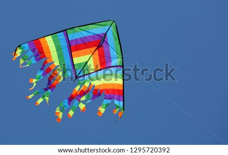 colored kite flies high in the blue sky making the children entertain