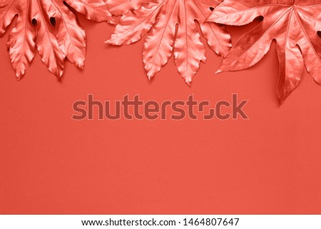colored  tropical leaves on bright coral color backdrop. Minimal summer exotic concept with copy space. Copy space, top view. Toned image.