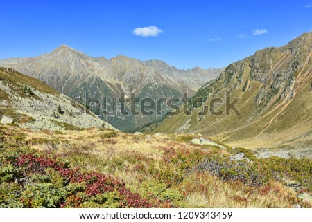 Colorfiul alpine landscape with rocky mountains, red shrubs, grass and forests under blue sky in autumn. Stubai Alps,Tyrol, Austria. #1209343459