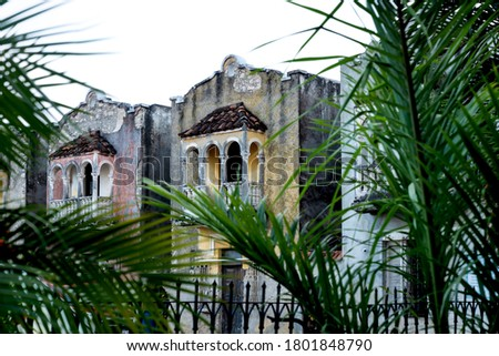 Colorful abandoned colonial houses with balconies behind blurred tropical palm trees, Merida, Yucatan, Mexico