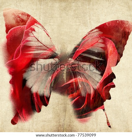 colorful abstract illustration with butterfly - stock photo