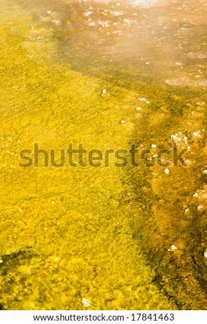 colorful abstract pattern in nature in the geyser basins of Yellowstone National Park