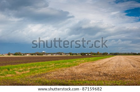 Colorful agricultural fields on the outskirts of a Dutch village in the province of North-Brabant
