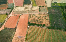 Colorful agriculture fields. Nature countryside landscape. Drone point of view. Malta
